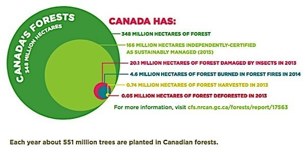 Forestry-Products-Association-Canada-greenhouse-gas-Carbon-footprint-Paris-agreement-climate-change-EDIWeekly